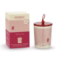 Bougie déco parfumée rechargeable Esprit de thé - Esteban