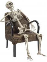 Comparateur de prix Squelette à poser 160 cm Halloween