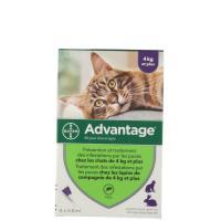 Advantage 80 chat et lapin de plus de 4 kg 6 pipettes