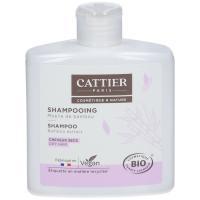 Shampoing Moelle De Bambou Bio De Cattier (Flacon : 250)